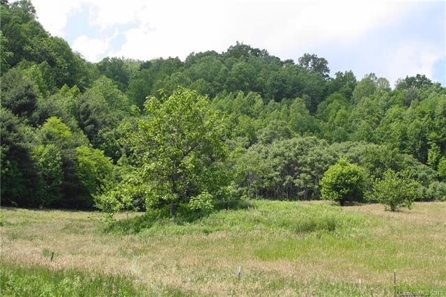 1240 Fork Road, Marshall, NC 28753 (#3509290) :: Francis Real Estate