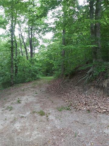 195 Teva Hollow Lane, Taylorsville, NC 28681 (#3509307) :: Rinehart Realty
