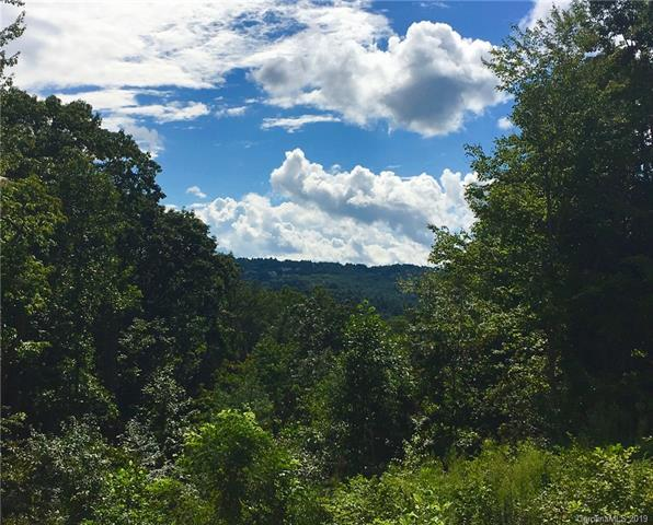 Lot w2 Curtain Bluff, Hendersonville, NC 28791 (#3509308) :: Keller Williams Professionals