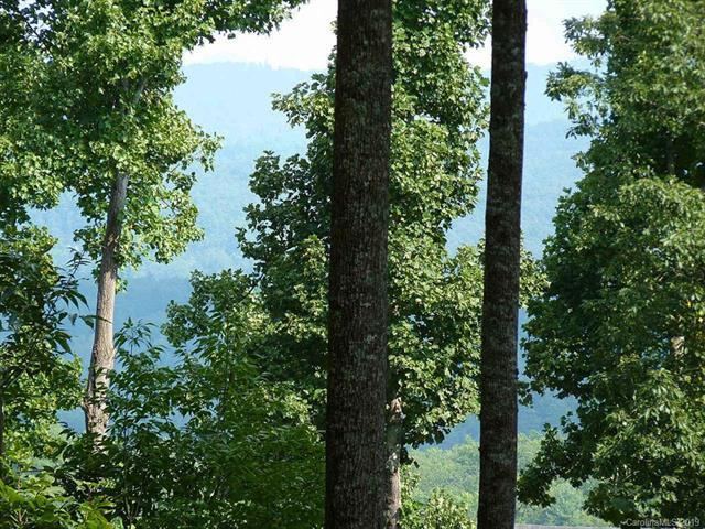 515 Hagen Drive #12, Hendersonville, NC 28739 (#3509459) :: Caulder Realty and Land Co.