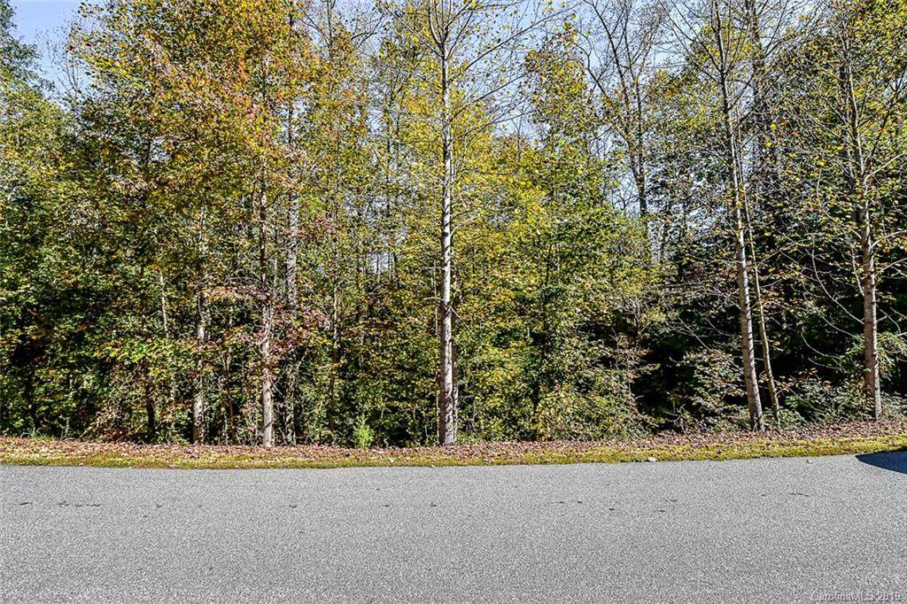 7713 Long Bay Parkway Lot 33, Catawba, NC 28609 (#3509566) :: LePage Johnson Realty Group, LLC