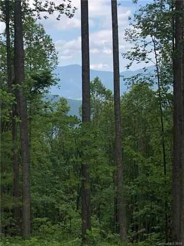 1412 Easy Wind Drive Lot 55, Swannanoa, NC 28778 (#3509704) :: Rinehart Realty