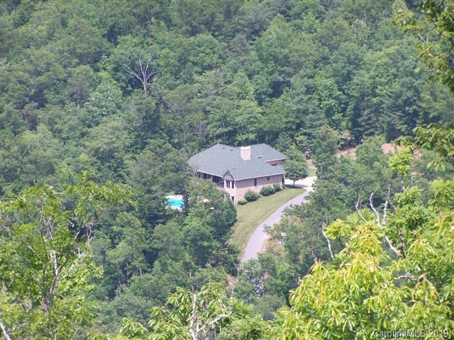 48 Middle Fork Branch Road, Brevard, NC 28712 (#3510031) :: Bluaxis Realty
