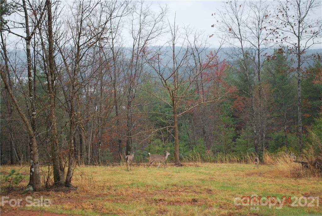 Lot 6 Lake Crest Drive #6, Nebo, NC 28761 (#3510338) :: LePage Johnson Realty Group, LLC