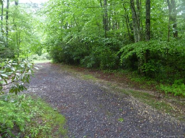 0 Otter Lane, Little Switzerland, NC 28749 (#3510664) :: Bluaxis Realty