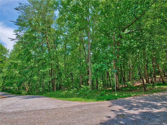LOTS 42 & 43 Shenandoah Road, Lake Lure, NC 28746 (#3510802) :: The Ramsey Group