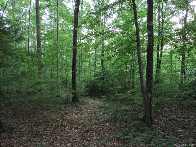 0000 Carolina Hills Drive, Hendersonville, NC 28792 (#3511005) :: Robert Greene Real Estate, Inc.