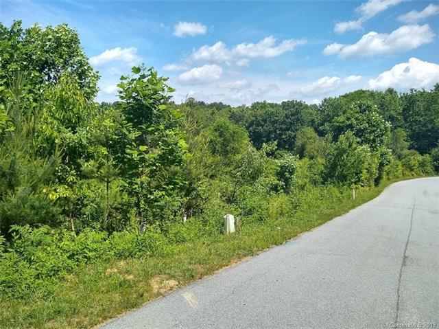 000 Plato Place #58, Etowah, NC 28729 (#3511233) :: Stephen Cooley Real Estate Group