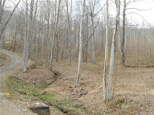 Lot 51 Wolverine Court #51, Waynesville, NC 28785 (#3511551) :: Bluaxis Realty