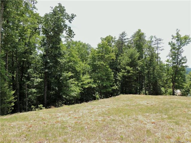 649 High Trail Drive, Nebo, NC 28761 (#3512249) :: LePage Johnson Realty Group, LLC