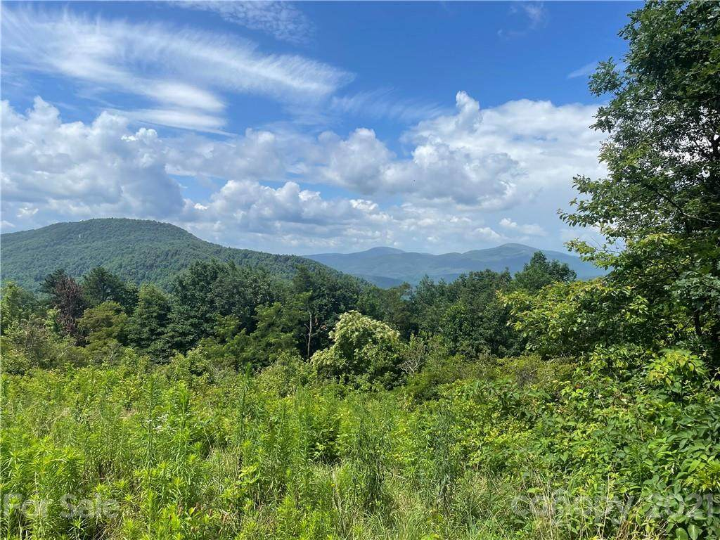 102 High Cliffs Trail, Black Mountain, NC 28711 (#3512472) :: The Premier Team at RE/MAX Executive Realty