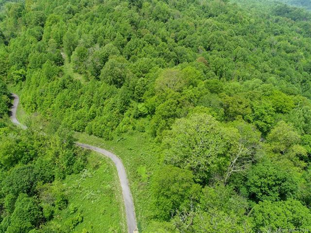 00 Prospect Lane, Clyde, NC 28721 (#3512782) :: Carlyle Properties
