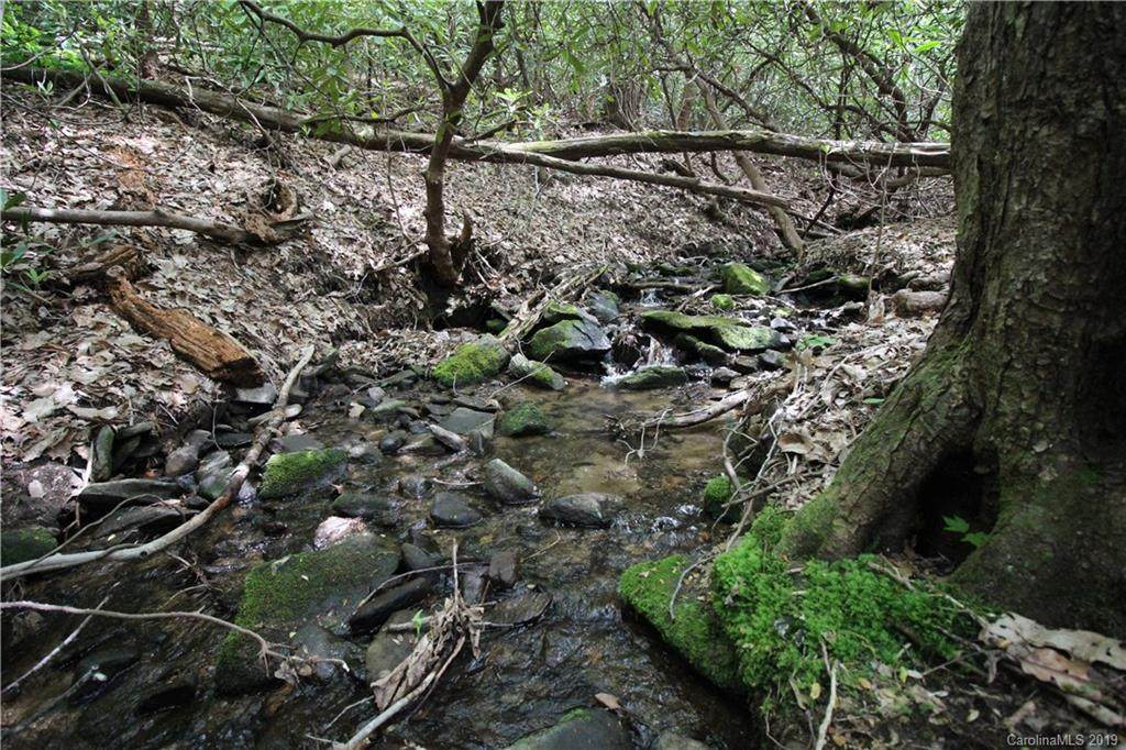 000 Lytle Cove Road, Black Mountain, NC 28778 (#3512785) :: Mossy Oak Properties Land and Luxury