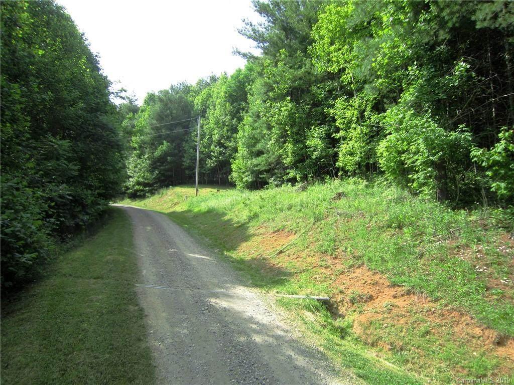 596 Black Bear Drive - Photo 1