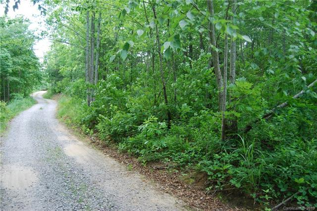 99999 Circle Drive #1, Black Mountain, NC 28711 (#3512902) :: Carlyle Properties