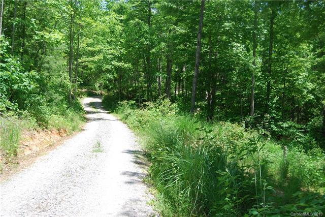 99999 Circle Drive #2, Black Mountain, NC 28711 (#3512911) :: Carlyle Properties