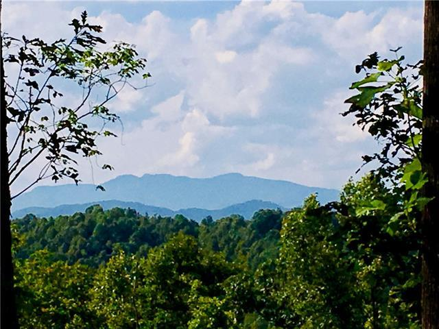 Lot 968, 4893 Soaring Top Lane, Lenoir, NC 28645 (#3513106) :: Besecker Homes Team