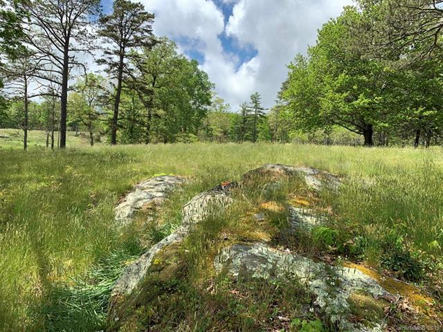 2A Stones Lake Road, Cedar Mountain, NC 28712 (#3513794) :: Keller Williams Professionals