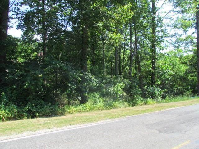 307 Carson Chapel Road - Photo 1