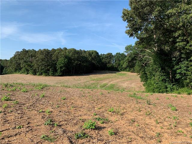 7420 Highway 205 Highway, Marshville, NC 28103 (#3514500) :: Puma & Associates Realty Inc.