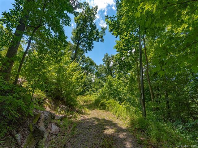 594 Wildcat Mountain Road, Waynesville, NC 28786 (#3514887) :: Keller Williams Professionals