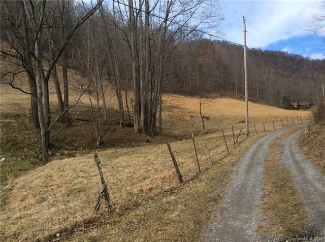 119 Black Branch Road, Canton, NC 28716 (#3515124) :: Exit Realty Vistas