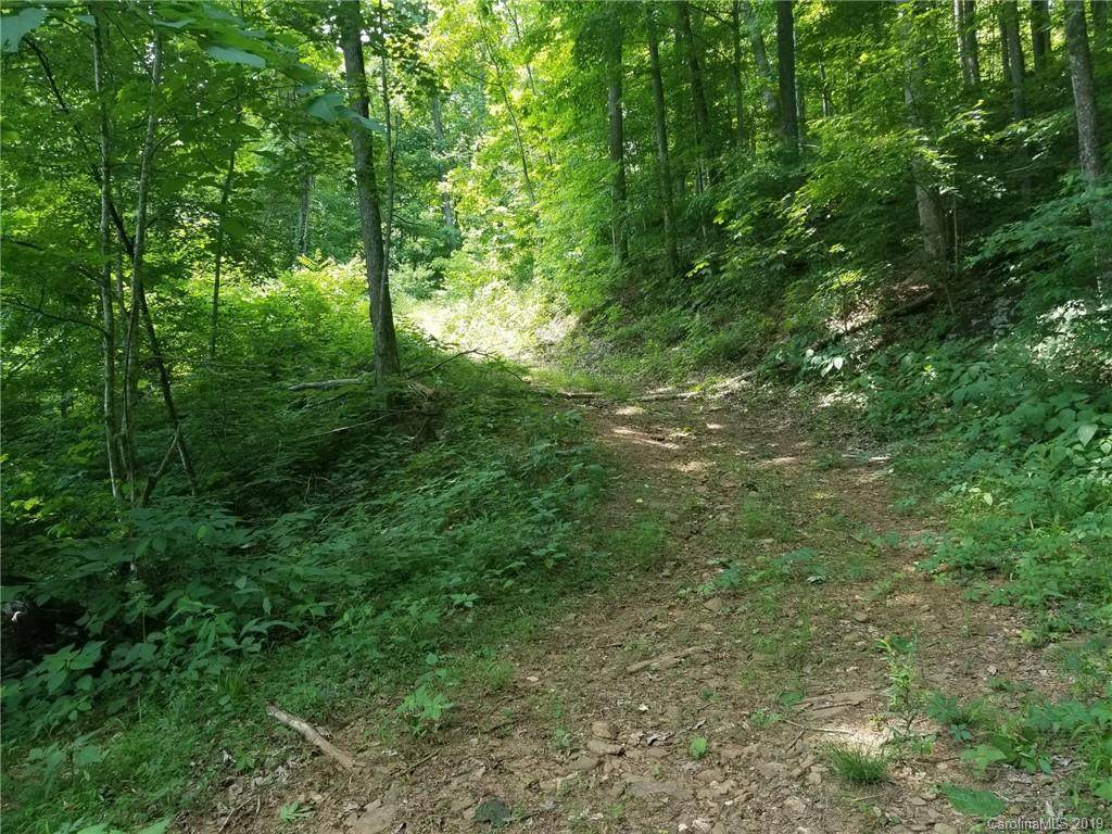 TBD Ayers Mountain Road - Photo 1