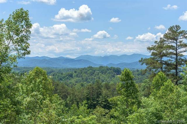 143 Saddle Ridge Drive #14, Alexander, NC 28701 (#3515698) :: High Performance Real Estate Advisors