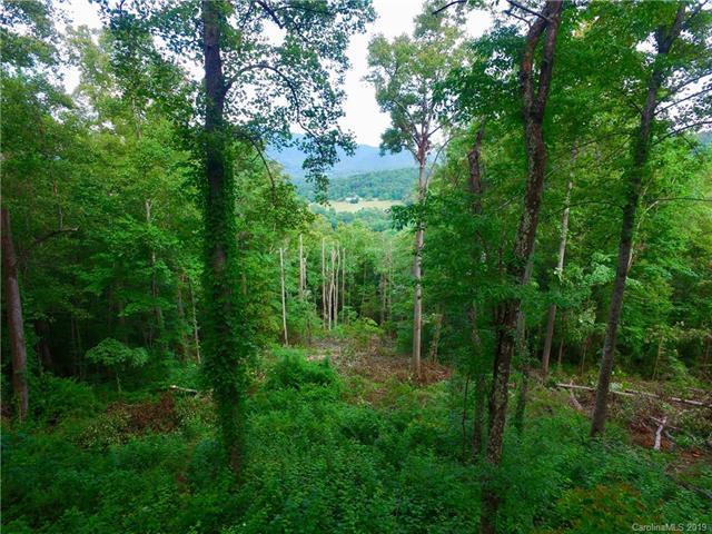 99999 Pheasant Ridge Drive #16, Fairview, NC 28730 (#3515825) :: High Performance Real Estate Advisors
