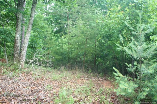 Lot 219 Captains Drive #219, Nebo, NC 28761 (#3516628) :: LePage Johnson Realty Group, LLC