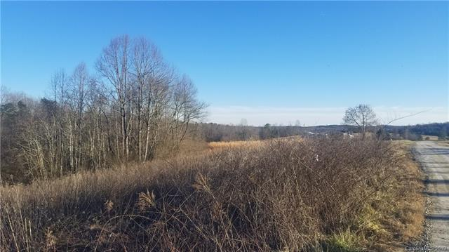 Lot 13 Buck Branch Road, Mill Spring, NC 28756 (#3517008) :: Carlyle Properties