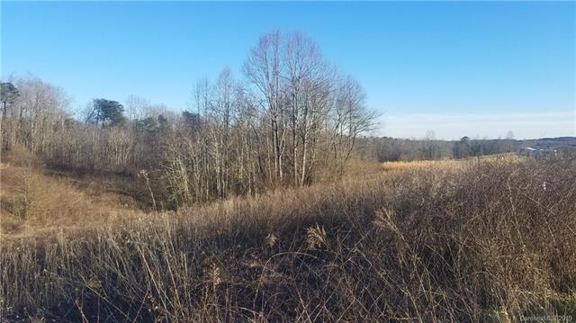 Lot 14 Buck Branch Road, Mill Spring, NC 28756 (#3517011) :: Roby Realty