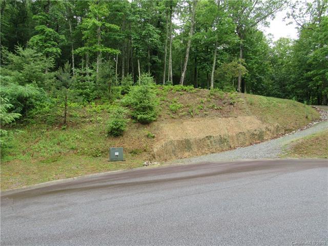 101 Buckhead Trail #29, Horse Shoe, NC 28742 (#3517015) :: Francis Real Estate