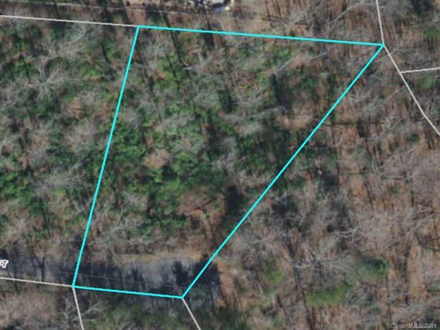 LOT 59 Poplar Court, Lake Lure, NC 28746 (#3517796) :: www.debrasellscarolinas.com
