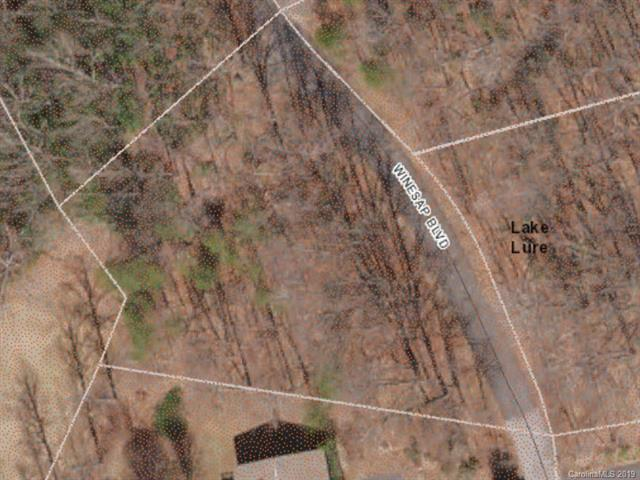 LOT 58 Winesap Boulevard, Lake Lure, NC 28746 (#3517915) :: Rinehart Realty
