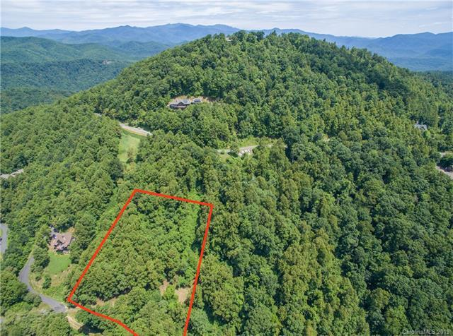 501 Warbler Lane T-62, Black Mountain, NC 28711 (#3518176) :: Rinehart Realty
