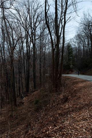 00 Hogback Mountain Road #64, Tryon, NC 28782 (#3518301) :: High Performance Real Estate Advisors