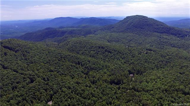 99999 Forest Brook Drive, Black Mountain, NC 28711 (#3518857) :: Bluaxis Realty