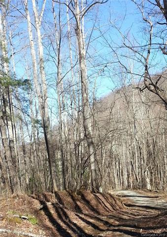 9999 Pegg Road, Barnardsville, NC 28709 (#3519437) :: Zanthia Hastings Team