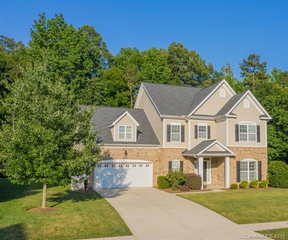 1713 Jekyll Lane, Waxhaw, NC 28173 (#3519517) :: RE/MAX RESULTS