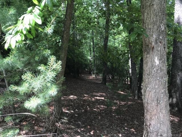 LOT 66 Shining Rock Path, Horse Shoe, NC 28742 (#3519813) :: Carlyle Properties