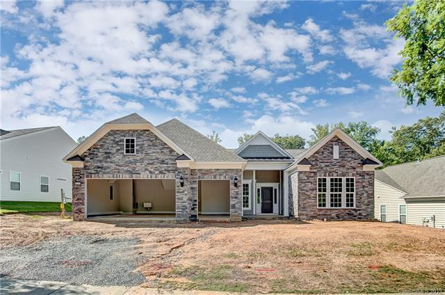 51255 Daffodil Court, Indian Land, SC 29707 (#3519852) :: Miller Realty Group