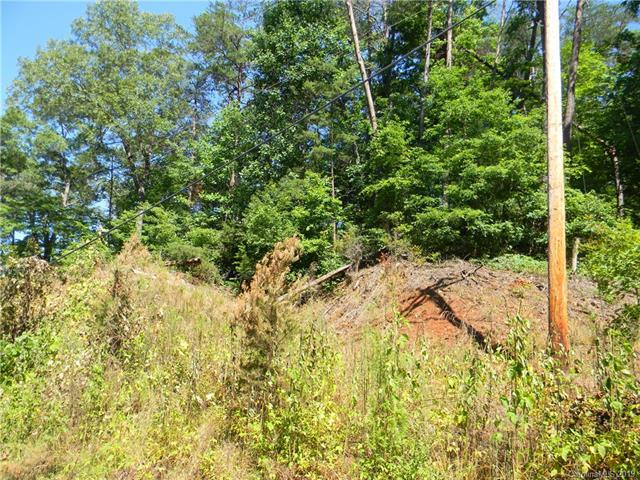 Lot 2 Bishop Lane, Mill Spring, NC 28756 (#3520032) :: Keller Williams Professionals