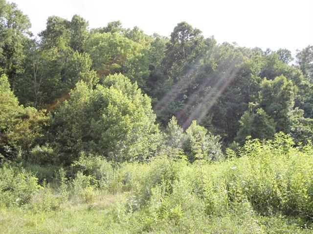 9999 Hemphill Road, Waynesville, NC 28785 (#3520095) :: Mitchell Rudd Group