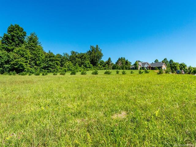0 Berwick Downs Drive #14, Flat Rock, NC 28731 (#3520210) :: LePage Johnson Realty Group, LLC