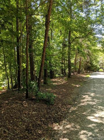 156 W Wilderness Road, Lake Lure, NC 28746 (#3520335) :: High Performance Real Estate Advisors