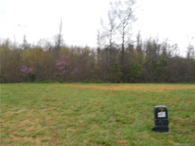 170 Audrey Lane, Salisbury, NC 28147 (#3520566) :: TeamHeidi®