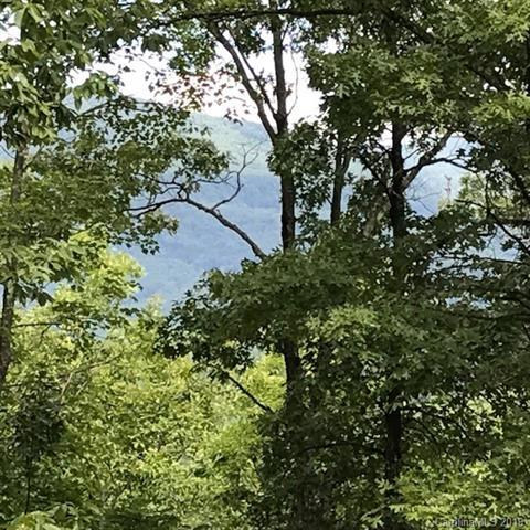Lot #7 Mountain Parkway #7, Mill Spring, NC 28756 (#3520712) :: DK Professionals Realty Lake Lure Inc.