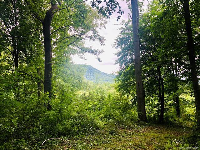 994 Stamey Cove Road, Waynesville, NC 28786 (#3521080) :: Carlyle Properties