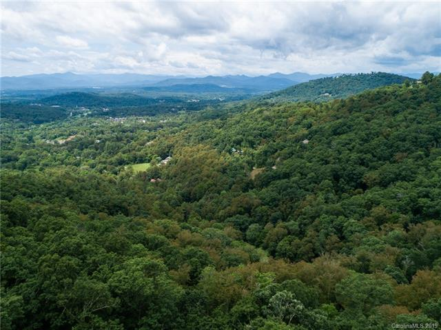 106 Rambling Ridge Road, Asheville, NC 28804 (#3521538) :: Carlyle Properties